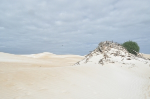 15-04-02 Coffin Bay, 7 Mile Beach 1