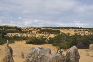 15-05-04 Pinnacles 1