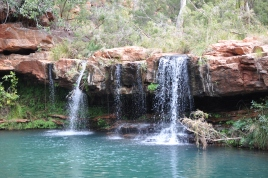 15-05-19 Karijini, Fern Pool 3