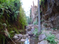 15-06-18 El Questro Gorge 4