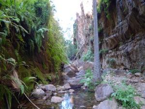 15-06-18 El Questro Gorge 4