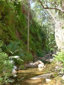 15-06-18 El Questro Gorge 6