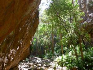 15-06-18 El Questro Gorge 7
