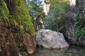 15-06-18 El Questro Gorge, Halfway Pool 1