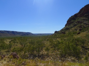 15-06-24 Bungles, Valley to Osmand Range 1