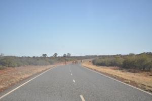 15-08-03 Road to Uluru