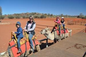 15-08-04 Uluru Camel Farm 1
