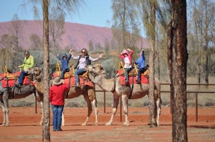 15-08-04 Uluru Camel Farm 3