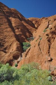 15-08-05 Uluru 24
