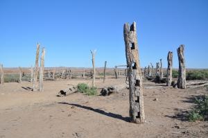 15-08-15 Dalhousie Ruins 9