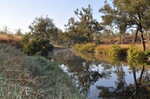 15-09-02 Archer River 1
