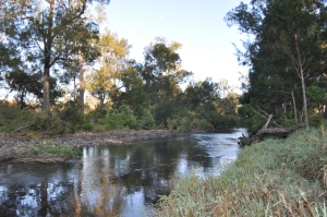 15-09-02 Archer River 2
