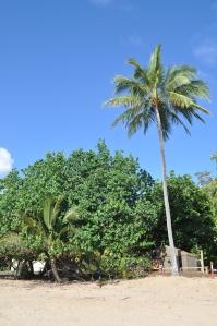 15-10-22 Binil Bay 3