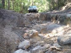 16-06-25 Mintbush Trail 4