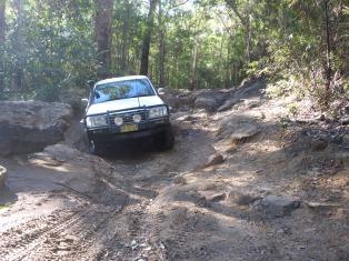 16-06-25 Mintbush Trail 5