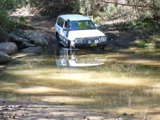 16-06-25 Mintbush Trail 6